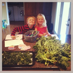 Kale chips for the whole family